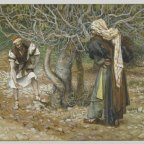 Of Towers, Fig Trees and Repentance–A Sermon on Luke 13:1-9